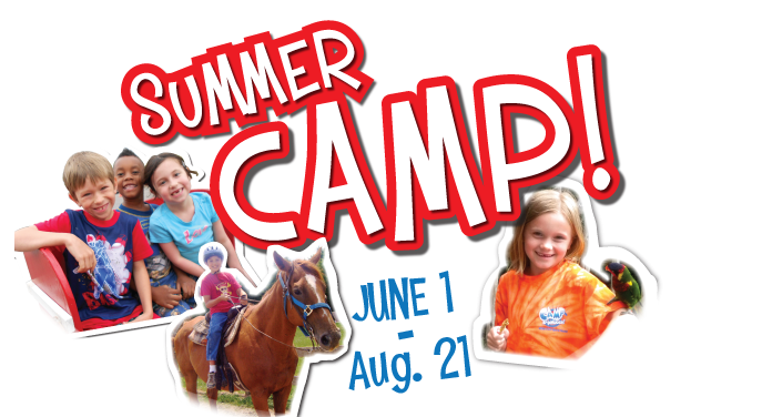 Enrolling now for Summer Camps