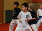 Nishime Family Karate gallery image 6