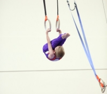 Boys Competitive Gymnastics Teams Gallery Image 8